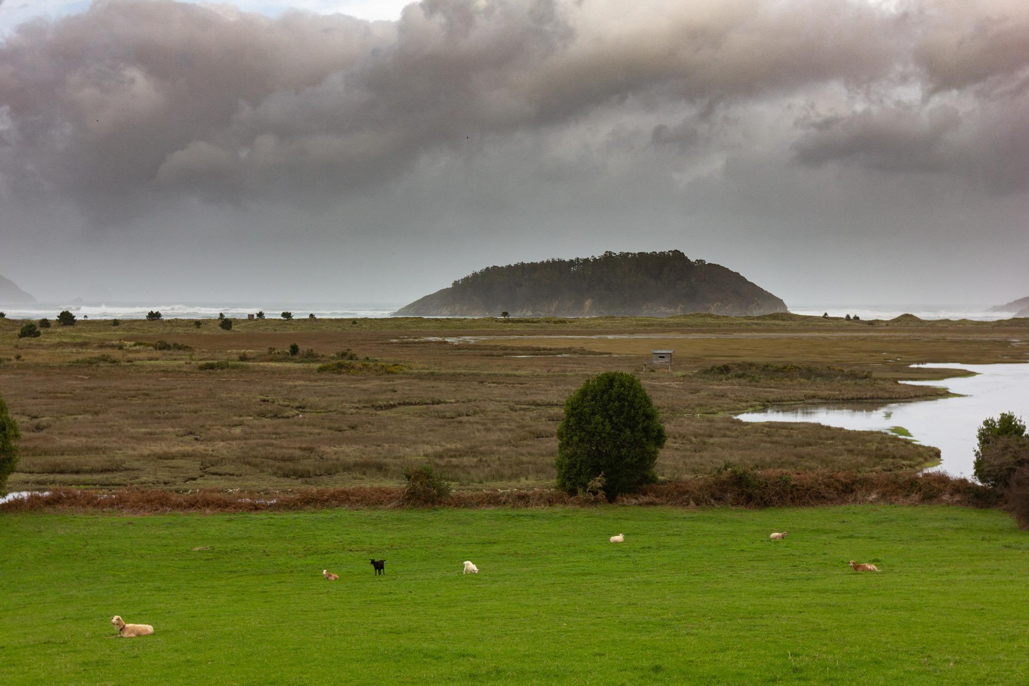 Humidal de Morouzos e illa de San Vicente
